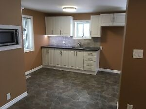 Newly renovated inside and out!! Priced for quick sale!!
