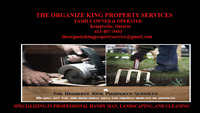 Professional Detailed Oriented Cleaning Services