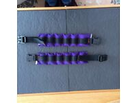Diving ankle weights