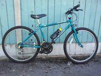 Raleigh Ascender Reflex Mountain Bike