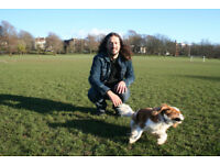 Experienced dog walker in central Brighton