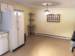 NICE BIG BASEMENT APT IN PRIVATE HOME