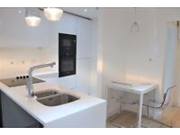 Newly Refurbished Modern Studio Apartment Available for Rent in Hackney, Dalston, E8