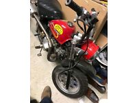 Champ 86cc monkey bike (pitbike not cr kx mini moto