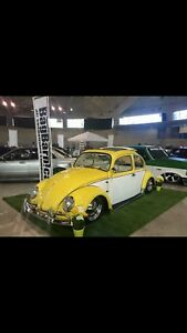 1966 VW Beetle/Bug