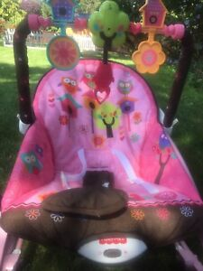 Pretty pink bouncer for your princess