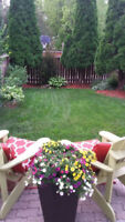 Decks Fences and Patio Renovations by Turf Boss