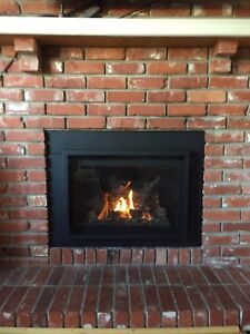 Fireplaces - Supply & Installation - Lowest Prices/Quality Work