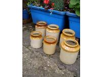 Vintage garden stonewear pots, 6