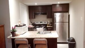 Furnished apartment Plateau - ALL INCLUDED - 3min walk to McGill