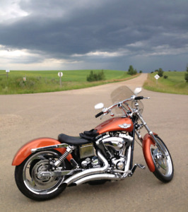 Anniversary edition Harley Davidson-reduced price