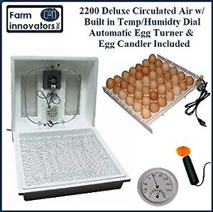 INCUBATOR for chicken eggs,duck, quail  automatic self turning