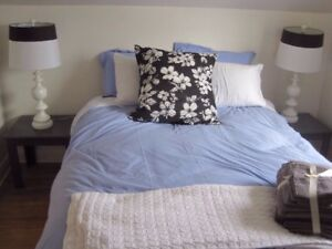 1 bedroom apt on Dease St fully furnished all inclusive.