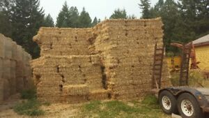 Small square bales and round bales for sale