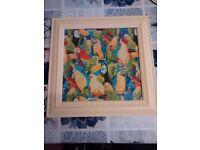 Four unique framed picture of parrots