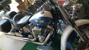 Harley Davidson Softail Deluxe - VERY LOW KMS!