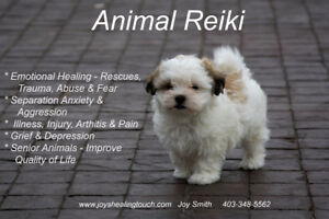 Reiki Level 1 and Animal Reiki Level 1 Class - Sept. 16 & 17/17