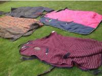 Horse blanket, girths,hats,body protectors ect