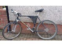 black diamond back bike