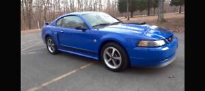 Looking for WRECKED/DAMAGED 5.0 Mustangs