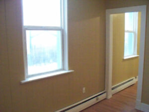 Large 1 bedroom Fully Renovated - DT Prince Albert for Aug 1st