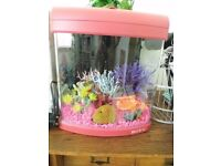 pink fishtank