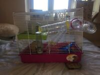 Beginners hamster kit with cage, accessories and food