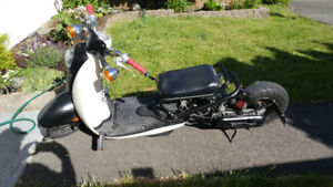 Customized honda ruckus for sale