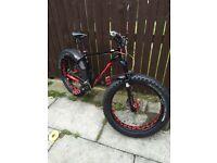 Specialized fatboy mountain bike