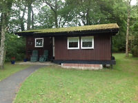 Cabin/ chalet in delightful woodland setting. Cenarth West Wales