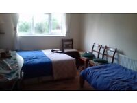 Large room in Woodside Park flat share