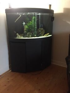 For sale corner bow tank fu setup