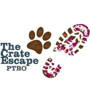 The Crate Escape PTBO is Hiring!
