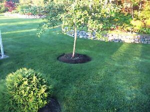 Professional lawn fertilizer.
