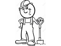 FANTASTIC ENERGETIC LABOURER available in WORCESTERSHIRE from Tuesday 15th
