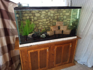 80 gallon aquarium with stand