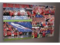SALE!: Brand new HUGE XL Barnsley FC canvas 36x24 inches now only £15!