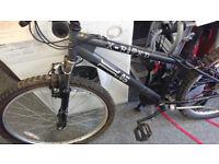 X-Rated Mountain Bike