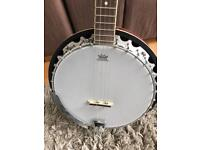 Remo 5 string banjo