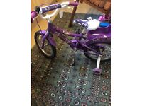 Girls bike brand new with tags !!!