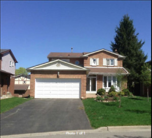 DETACHED HOUSE RENTAL IN THORNHILL