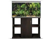 Rena aquarium fish tank large stand and pump