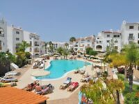 Sunset Harbour. Holiday apartment in the first line - Costa Adeje, Tenerife