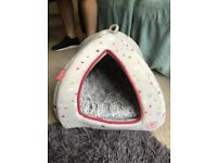 Little pet face pet bed igloo