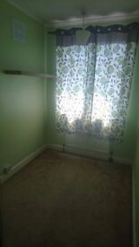 A small single room for rent immediately