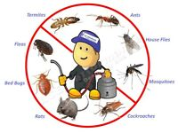 Mice Bedbugs Rat Cockroaches Guaranteed Pest Control Service london