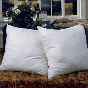 Euro Square Feather Pillow 2 Pack, New