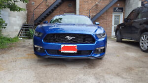 2017 Ford Mustang V6 Coupe (2 door)