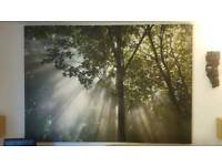 Large wall picture. Canvas. Wall art