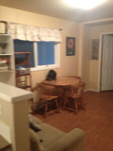 Working professional looking for respectful roommate